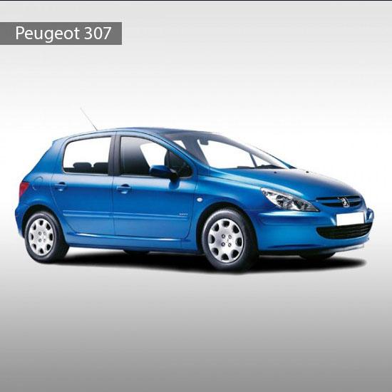 Peugeot-307-cover-550x550